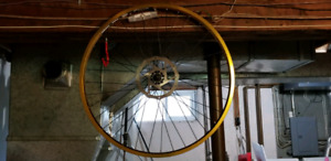 "Alienation PBR gold 26"" front wheel and disc"