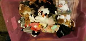 SEVERAL QUALITY Ty BEANIE BABY GROUP