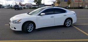 2012 Nissan Maxima white Pearl *Certified *$8490