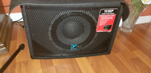 Yorkville  YX Series Powered Subwoofer - 10 inch - 200 Watts.