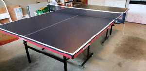 Table Tennis : SOLD