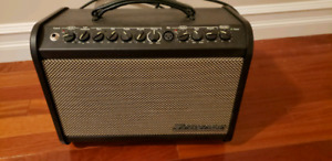 Taynor Mini Acoustic Guitar Amp plus mic & stand