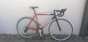 Apollo RD 2100 Road Bike