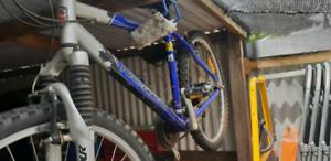 Norsco bike.