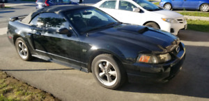 2002 Mustang GT Convertible **REDUCED**