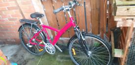 B twin original 500 adults size bike