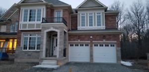 Beautiful house for rent in chippawa