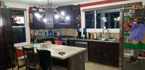 KITCHEN CUPBOARDS AND ISLAND