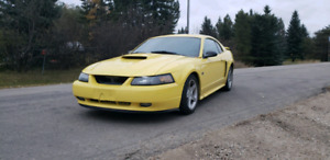2001 ford mustang gt 5spd
