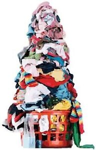 Laundry Service at your Door Kitchener / Waterloo Kitchener Area image 4
