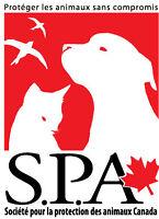 Agent de sensibilisation aux droits animaliers - plein/partiel