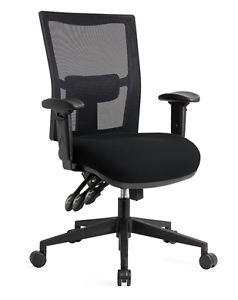 Office Chair - Luxury Near New Professional Surfers Paradise Gold Coast City Preview