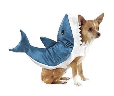 Dog Shark Costume Ebay