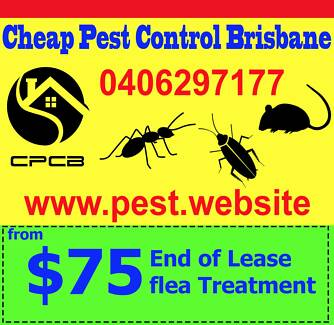 Cheap Pest Control Brisbane (from $75)