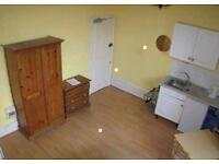 Nice Double Studio flat in Clapham Available with Garden