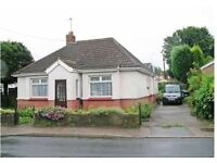 Spacious and exceptionally bright 2 double bedroom bungalow with south facing garden and parking