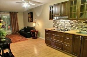 For Rent: 1 bd rm den CLOSE TO OLIVER, KINGSWAY WALL....