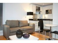 BEAUTIFUL 1 BEDROOM FLAT WITH PRIVATE BALCONY AND WOOD FLOORINGS IN INDESCON SQUARE, CANARY WHARF
