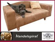 Hundecouch