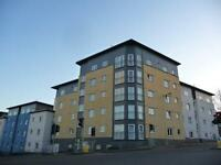 2 bedroom flat in 16 Bellsmeadow Road, FALKIRK, FK1
