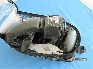Boxing/Training Mitts Morayfield Caboolture Area Preview