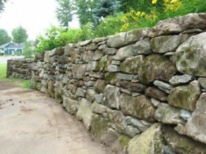 Moss Rock / Glacier Stone - L.Martin Garden center