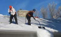 Snow Removal (Clearing Roofs)