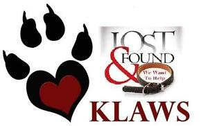 KLAWS: Lost or Found a Pet? Contact KLAWS for free assistance!