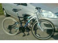 Unisex bike