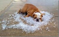 The snow will go away  and then you'll need A/C!