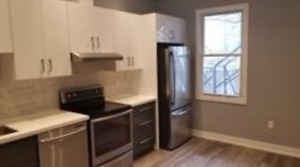 One Bedroom Apartment W/11 Feet Ceilings Trough Out,