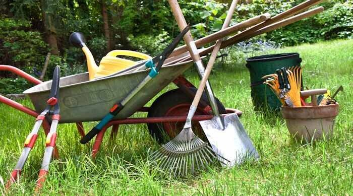 Gardening and property Maintenance service