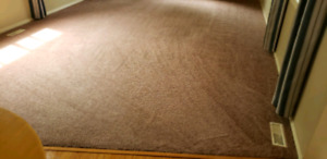 PROFESSIONAL STEAM CARPET UPHOLSTERY CLEANING