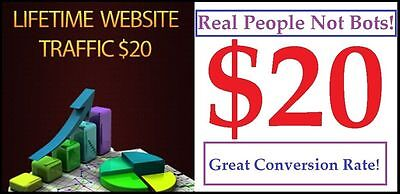Unlimited Lifetime Website Traffic For 1 Website Only 20