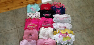 Baby Girl clothes 3-6m (Lot#11)