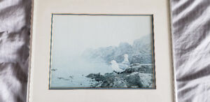 Seagulls Standing on a Rock Watercolour, Silver Frame/Glass