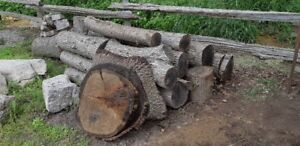 Oak Logs   /    Wood
