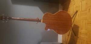 Cort Acoustic/Electric Bass