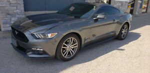 FORD MUSTANG FOR SALE!! 2016,GREAT DEAL, HURRY DON'T MISS out!!!