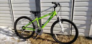 Youth Mountain Bike- ready to ride!