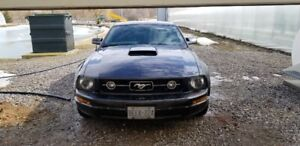 Unique 2006 ford mustang coupe