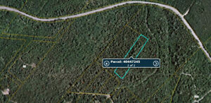 1 Hectare on Dan Brook Road, Cains River, NB   MLS® # NB034346