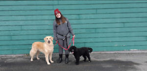 PROFESSIONAL PET SITTER AVAILABLE DECEMBER 9TH-12TH
