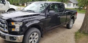 2015 Ford F-150 XLT 5.0L For Sale