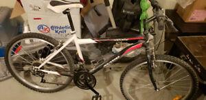 Men's 18 SPD Bike