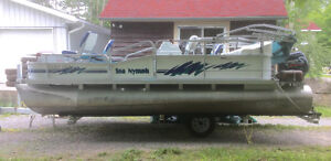 1994 Sea Nymph FM 180 Pontoon with 1994 40hp 4 stroke Evinrude