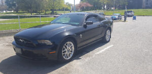 2014 Ford Mustang V6 Premium ( Heated Seats, Auto, Back Camera)