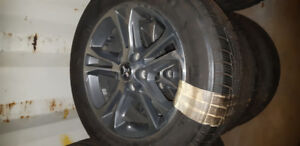 Winter tire package mustang rims & tires