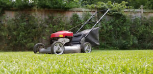 """LAWN MOWER 21"""" 6.75 HP MADE IN USA"""