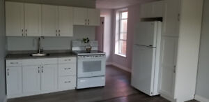 1 Bdrm Renovated Apartment for Rent - $1,000/month All Inclusive